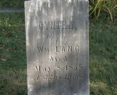 LANG, WM. - Lorain County, Ohio | WM. LANG - Ohio Gravestone Photos