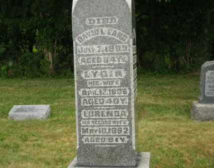 LANG, LYDIA - Lorain County, Ohio | LYDIA LANG - Ohio Gravestone Photos
