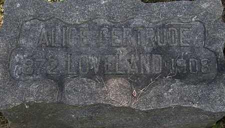 LOVELAND, ALICE GERTRUDE - Lorain County, Ohio | ALICE GERTRUDE LOVELAND - Ohio Gravestone Photos