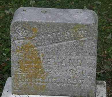 MOSHER LOVELAND, MARY - Lorain County, Ohio   MARY MOSHER LOVELAND - Ohio Gravestone Photos