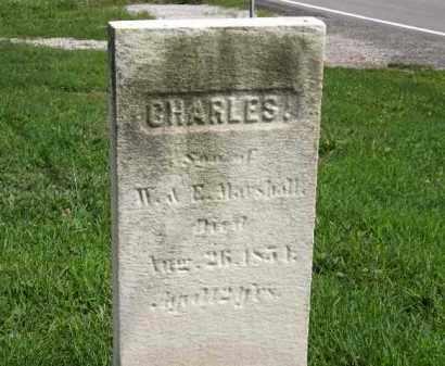 MARSHALL, E. - Lorain County, Ohio   E. MARSHALL - Ohio Gravestone Photos