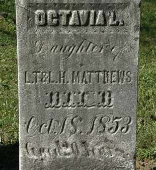 MATTHEWS, L.H. - Lorain County, Ohio | L.H. MATTHEWS - Ohio Gravestone Photos