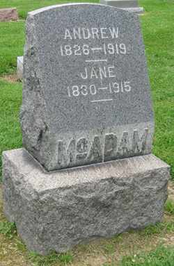 MCADAM, JANE - Lorain County, Ohio | JANE MCADAM - Ohio Gravestone Photos