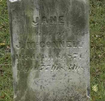 MCCONNELL, JANE - Lorain County, Ohio | JANE MCCONNELL - Ohio Gravestone Photos