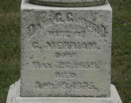 MERRIAM, DANA G. - Lorain County, Ohio | DANA G. MERRIAM - Ohio Gravestone Photos