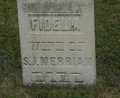 MERRIAM, FIDELIA - Lorain County, Ohio | FIDELIA MERRIAM - Ohio Gravestone Photos
