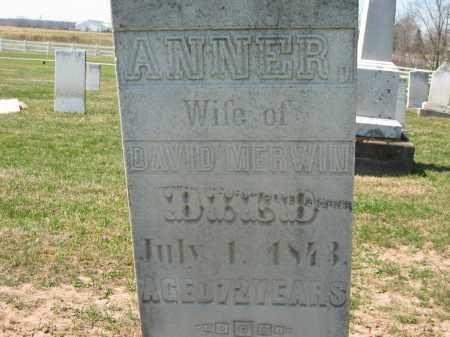 MERWIN, ANNER - Lorain County, Ohio | ANNER MERWIN - Ohio Gravestone Photos