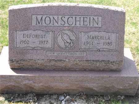 MONSCHEIN, MARCELLA AGNES - Lorain County, Ohio | MARCELLA AGNES MONSCHEIN - Ohio Gravestone Photos