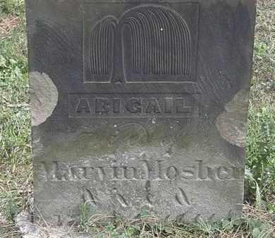 MOSHER, ABIGAIL - Lorain County, Ohio | ABIGAIL MOSHER - Ohio Gravestone Photos