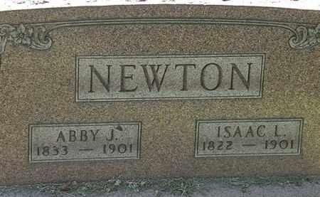 NEWTON, ISAAC L. - Lorain County, Ohio | ISAAC L. NEWTON - Ohio Gravestone Photos