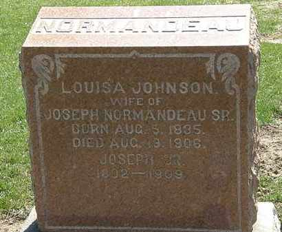 JOHNSON NORMANDEAU, LOUISA - Lorain County, Ohio   LOUISA JOHNSON NORMANDEAU - Ohio Gravestone Photos