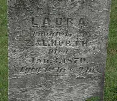 NORTH, LAURA - Lorain County, Ohio | LAURA NORTH - Ohio Gravestone Photos