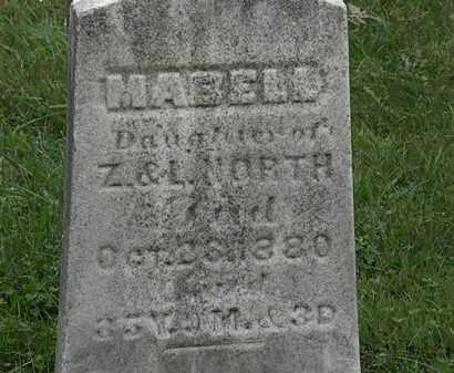 NORTH, MABELL - Lorain County, Ohio | MABELL NORTH - Ohio Gravestone Photos