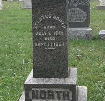NORTH, ZELOTES - Lorain County, Ohio   ZELOTES NORTH - Ohio Gravestone Photos
