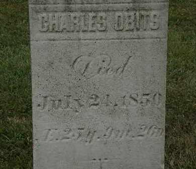 OBITS, CHARLES - Lorain County, Ohio   CHARLES OBITS - Ohio Gravestone Photos