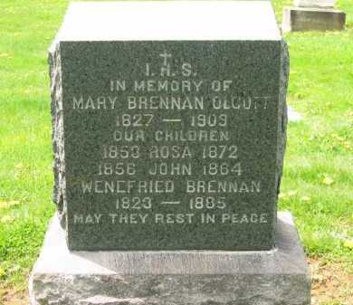 OLCOTT, MARY - Lorain County, Ohio | MARY OLCOTT - Ohio Gravestone Photos