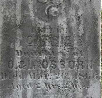OSBORN, CARRIE - Lorain County, Ohio   CARRIE OSBORN - Ohio Gravestone Photos