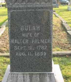 PALMER, WALTER - Lorain County, Ohio | WALTER PALMER - Ohio Gravestone Photos