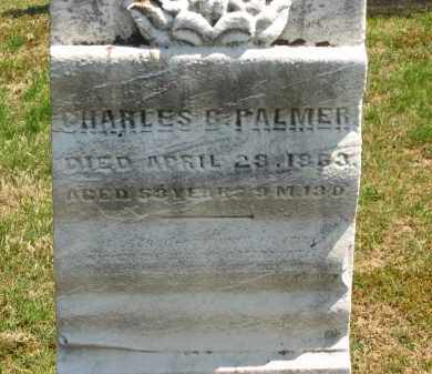 PALMER, CHARLES B. - Lorain County, Ohio   CHARLES B. PALMER - Ohio Gravestone Photos
