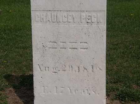 PECK, CHAUNCEY - Lorain County, Ohio   CHAUNCEY PECK - Ohio Gravestone Photos