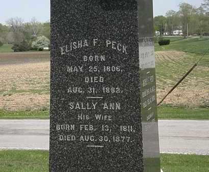 PECK, SALLY ANN - Lorain County, Ohio | SALLY ANN PECK - Ohio Gravestone Photos