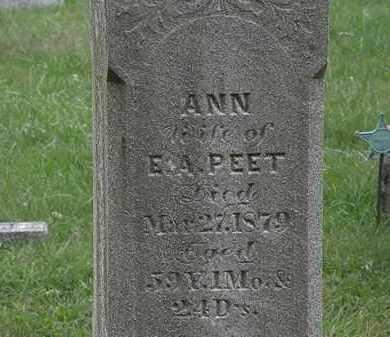 PEET, E.A. - Lorain County, Ohio | E.A. PEET - Ohio Gravestone Photos