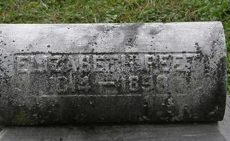 PEET, ELIZABETH - Lorain County, Ohio | ELIZABETH PEET - Ohio Gravestone Photos