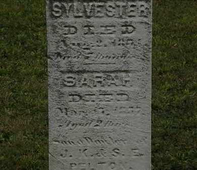 PELTON, S.E. - Lorain County, Ohio | S.E. PELTON - Ohio Gravestone Photos