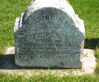 PENFIELD, PETER - Lorain County, Ohio | PETER PENFIELD - Ohio Gravestone Photos