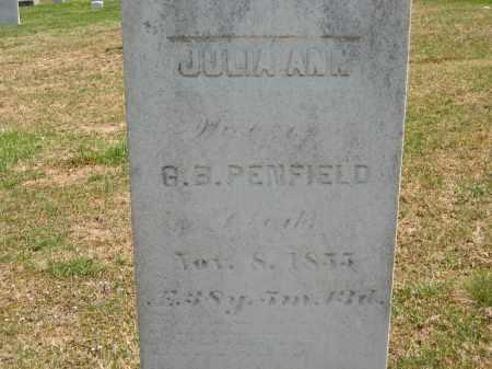 PENFIELD, JULIA ANN - Lorain County, Ohio | JULIA ANN PENFIELD - Ohio Gravestone Photos