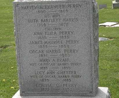 HARRIS PERRY, RUTH BARTLETT - Lorain County, Ohio | RUTH BARTLETT HARRIS PERRY - Ohio Gravestone Photos