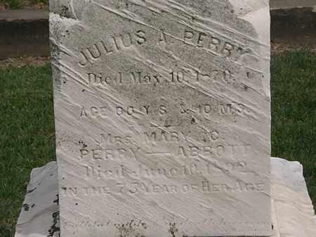 PERRY-ABBOTT, MARY C. - Lorain County, Ohio   MARY C. PERRY-ABBOTT - Ohio Gravestone Photos