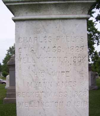 AMES PHELPS, M. ANN - Lorain County, Ohio | M. ANN AMES PHELPS - Ohio Gravestone Photos