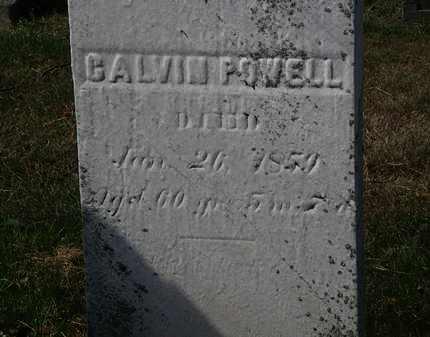 POWELL, CALVIN - Lorain County, Ohio | CALVIN POWELL - Ohio Gravestone Photos