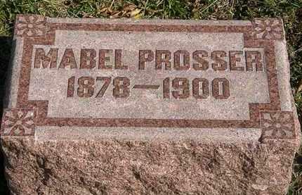PROSSER, MABEL - Lorain County, Ohio | MABEL PROSSER - Ohio Gravestone Photos