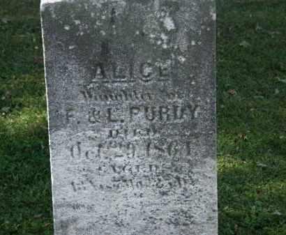 PURDY, F. - Lorain County, Ohio | F. PURDY - Ohio Gravestone Photos