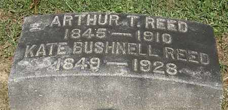 BUSHNELL REED, KATE - Lorain County, Ohio | KATE BUSHNELL REED - Ohio Gravestone Photos