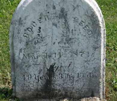 REED, ROBERT A. - Lorain County, Ohio   ROBERT A. REED - Ohio Gravestone Photos