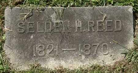 REED, SELDEN H. - Lorain County, Ohio | SELDEN H. REED - Ohio Gravestone Photos