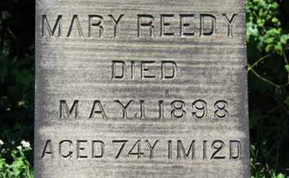 REEDY, MARY - Lorain County, Ohio | MARY REEDY - Ohio Gravestone Photos