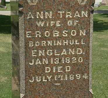 TRAN ROBSON, ANN - Lorain County, Ohio | ANN TRAN ROBSON - Ohio Gravestone Photos