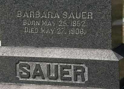 SAUER, BARBARA - Lorain County, Ohio | BARBARA SAUER - Ohio Gravestone Photos