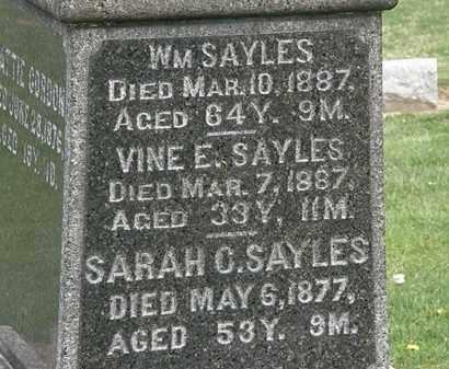 SAYLES, VINE - Lorain County, Ohio | VINE SAYLES - Ohio Gravestone Photos