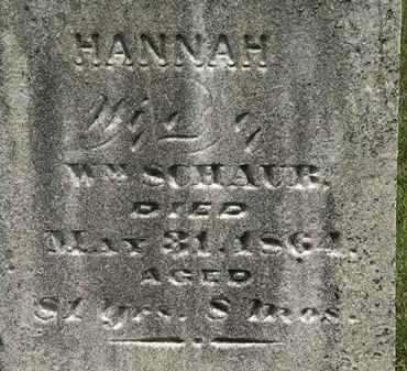 SCHAUB, WM. - Lorain County, Ohio   WM. SCHAUB - Ohio Gravestone Photos
