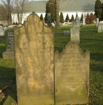 SCHELLHOUS, JULIANNA - Lorain County, Ohio | JULIANNA SCHELLHOUS - Ohio Gravestone Photos