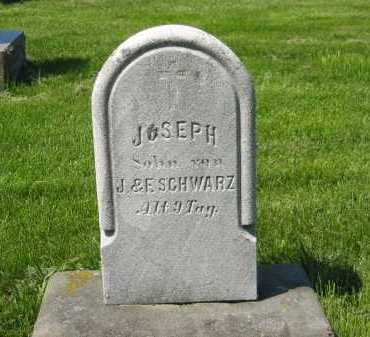 SCHWARZ, F. - Lorain County, Ohio | F. SCHWARZ - Ohio Gravestone Photos