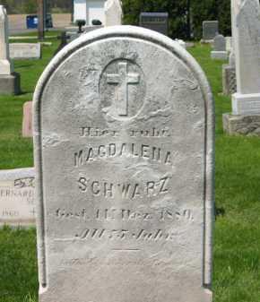 SCHWARZ, MAGDALENA - Lorain County, Ohio | MAGDALENA SCHWARZ - Ohio Gravestone Photos