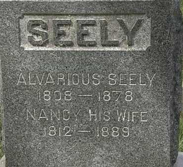 SEELY, ALVARIOUS - Lorain County, Ohio | ALVARIOUS SEELY - Ohio Gravestone Photos
