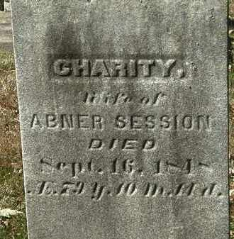 SESSION, CHARITY - Lorain County, Ohio | CHARITY SESSION - Ohio Gravestone Photos