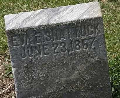 SHATTUCK, EVA E. - Lorain County, Ohio   EVA E. SHATTUCK - Ohio Gravestone Photos